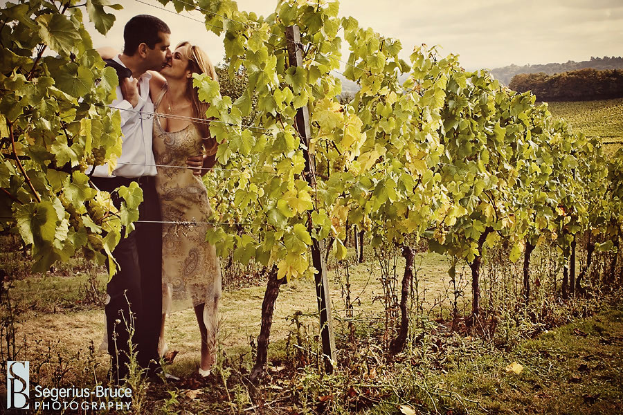 Denbies Vineyard in Dorking, Wedding Venue