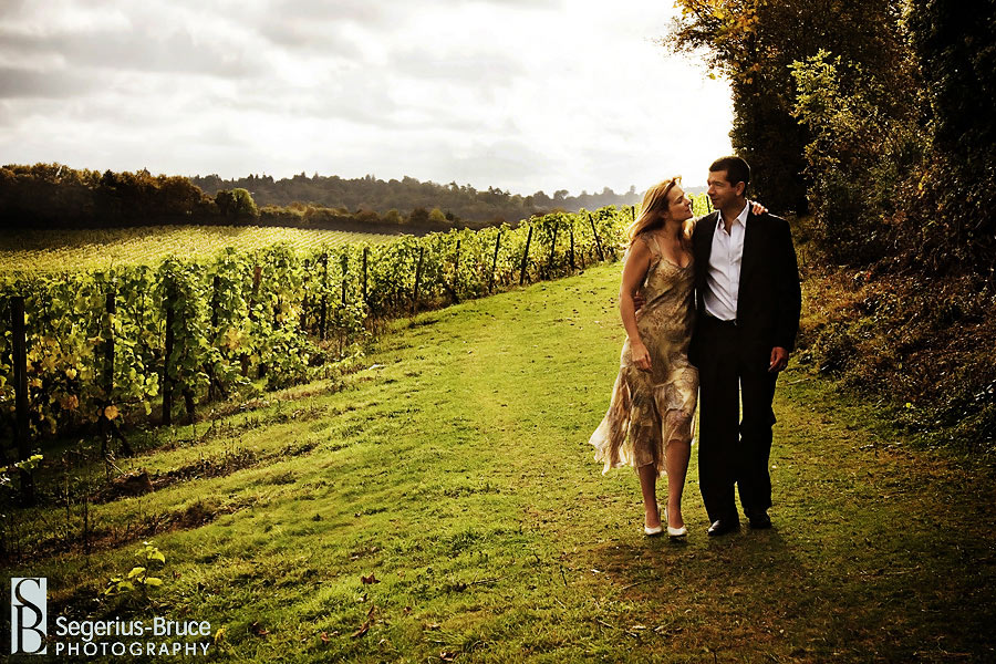 Denbies Vineyard wedding venue in Surrey