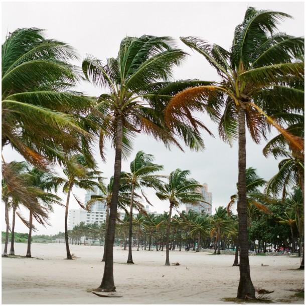 Contax 645 Fuji 400H Miami South Beach Travel (5)