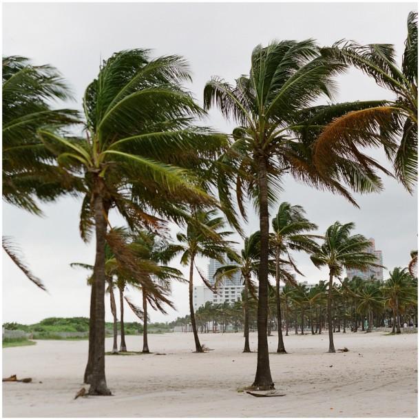 Contax 645 Fuji 400H Miami South Beach Travel (7)