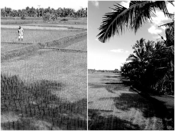 2011 Retrospective Travel Photos by Segerius Bruce Photography (48)
