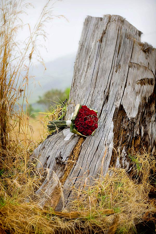 Wedding Bouquet with red roses taken outdoors in South Africa