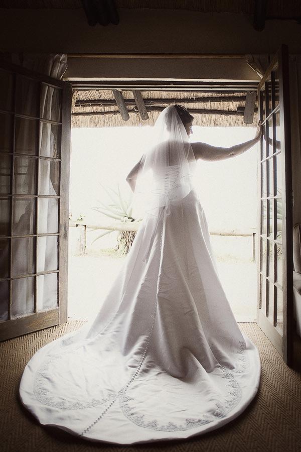 Bride backlit
